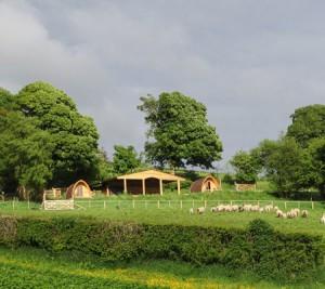 Powys Pods