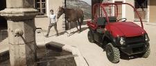 petrol-610-mule